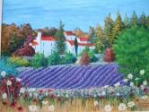 Lavendar field at Bastide St Jacques