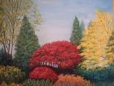 Autumn at Deer Lake